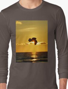 Soaring With Confidence Long Sleeve T-Shirt
