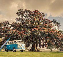 VW Kombi by Paul Alsop