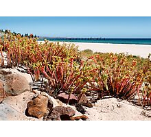 Australian Beaches Photographic Print