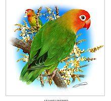 LILIANS LOVEBIRD 1 by DilettantO