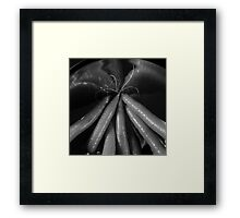 Tasty carrots in a colander - monochrome Framed Print
