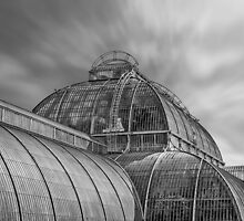 Temperate house Kew Gardens Black and White by Chris Thaxter