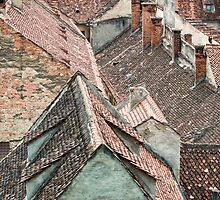 Downtown roof view  by Dobromir Dobrinov