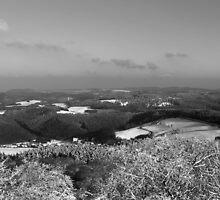 Rolling hills and snowy forests - monochrome by intensivelight