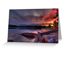 An evening at Lake of the Woods Greeting Card