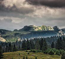 Nature panorama by Dobromir Dobrinov