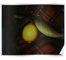 fallen fruit on fleece Poster