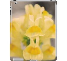 Belle of the Ball iPad Case/Skin