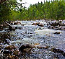 Neselva River. Nord-trondelag . Norway.  by © Andrzej Goszcz,M.D. Ph.D
