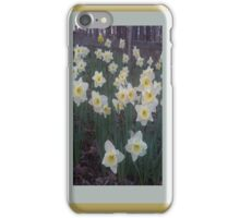 Flowers From the Backyard iPhone Case/Skin