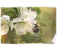 Apple Blossom Time - Bee Included Poster