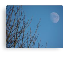 Daytime moon Canvas Print