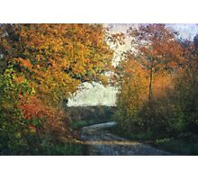 Plumstead Road 3 Photographic Print
