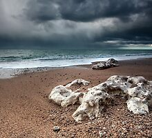 Stormy coast by Olha Rohulya
