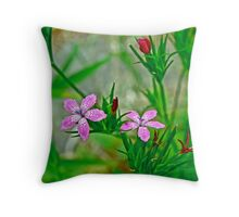 Deptford Pink Wildflower - Dianthus armeria Throw Pillow