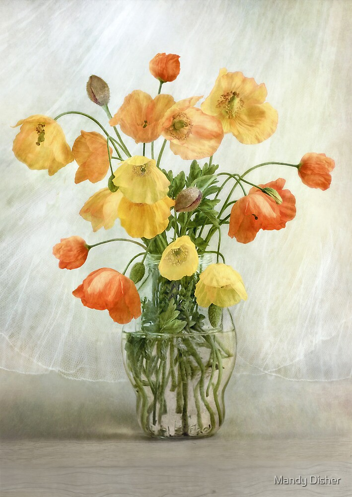 Welsh poppies by Mandy Disher