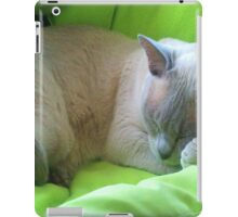 Sleeping Zoe iPad Case/Skin