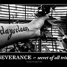 Perseverance ~ secret of all triumphs! by Lebogang Manganye