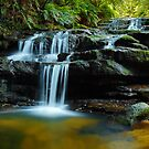 Leura Cascades, Blue Mountains, New South Wales, Australia by Michael Boniwell