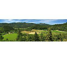 Wine Country Panorama Photographic Print