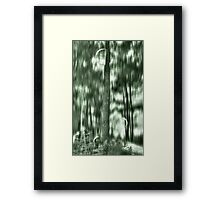 ©DA The Forest Ac Monochromatic C Framed Print