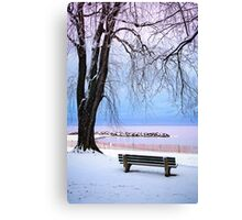 Winter park in Toronto Canvas Print