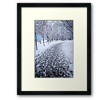 Winter park in Toronto Framed Print