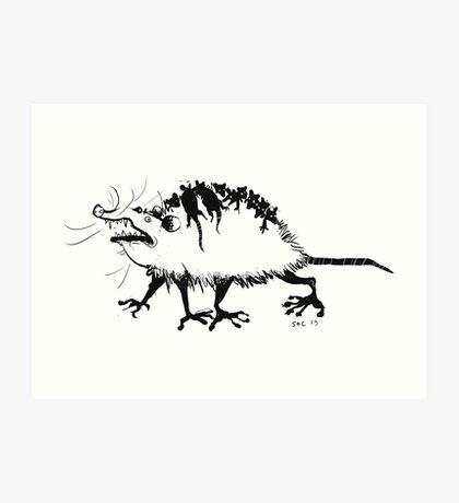 Possum Art Print