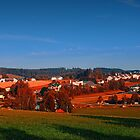 Bad Leonfelden village scenery by Patrick Jobst