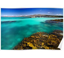 Aqua & Weed - Bay of Fires, Tasmania Poster
