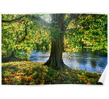 Shades of Autumn Poster