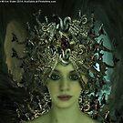 Medusa by Kim Slater