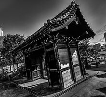 IMG_0338_6_7_tonemapped_clipped_blacks_bw_PS_CamRaw by Brendan Arthur Ring