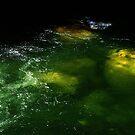 Mossman Gorge Emerald River by Imi Koetz