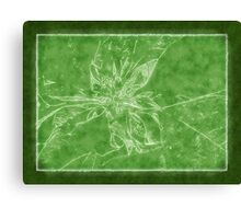 Pale Yellow Poinsettia 1 Outlined Green Canvas Print