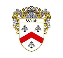 Walsh Coat of Arms / Walsh Family Crest Photographic Print