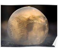 Frozen Soap Bubble  Poster