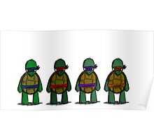 Adolescent Variant Shinobi Tortoises  Poster
