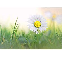 Natural born beauty... Photographic Print