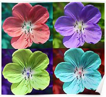Hardy Geranium Multicolor Girly Flower Pop Art Poster
