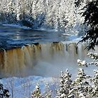 Frozen Tahquamenon Falls  by Debbie  Maglothin