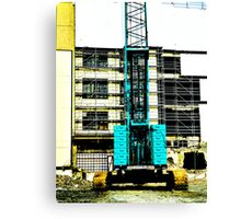 Another Blue Crane  Canvas Print