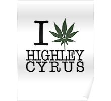 I love Highley Cyrus - Miley Cyrus  Poster