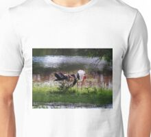 MALE STORK ♥ROMANCING THE FEMALE PAINTED STORK♥-VERSION THREE-THATS AMORE-- VARIOUS APPAREL Unisex T-Shirt