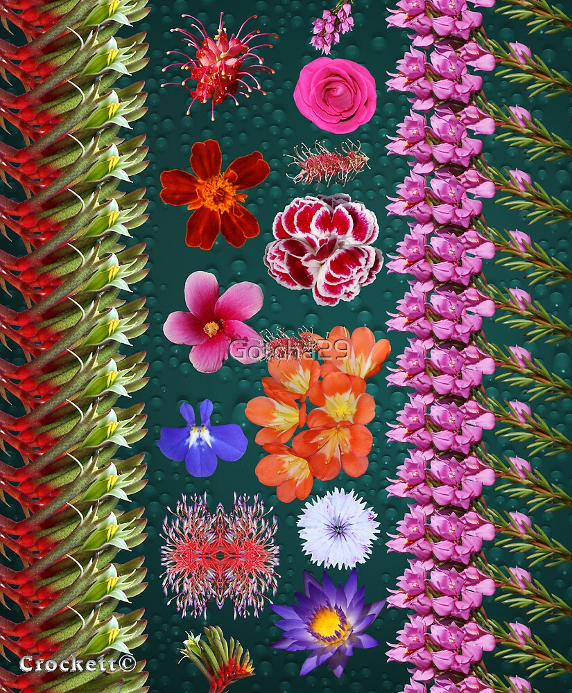 Beautiful Flowers Calendar 3 Front Cover by Gotcha29
