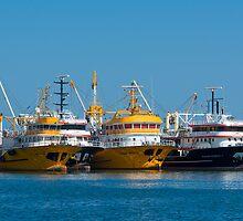 Fishing industry by Dobromir Dobrinov