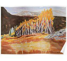 Snowmass Canyon near Aspen Colorado Poster