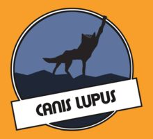 Canis lupus by Sleepy-Dan
