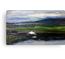 Swan over the river Canvas Print