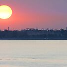 Venetian Lagoon at Sunset by Tom Gomez